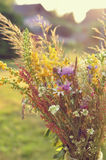 Beautiful bouquet of bright wildflowers stock image
