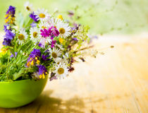 Beautiful bouquet of bright wildflowers Royalty Free Stock Photos