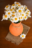 Beautiful bouquet chamomiles in vase Stock Photography