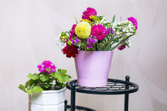 Beautiful bouquet of chrysanthemums  flowers in pink vase Stock Photography