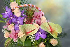Beautiful bouquet of colorful flowers Stock Photography