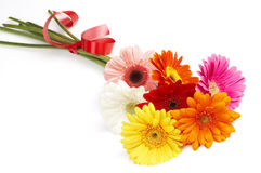 Beautiful bouquet of colorful gerbera Royalty Free Stock Photography