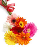 Beautiful bouquet of colorful gerbera flowers Royalty Free Stock Image