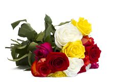 Beautiful bouquet of colorful roses on a white Royalty Free Stock Images