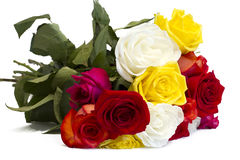Beautiful bouquet of colorful roses on a white Stock Photos