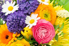 Beautiful bouquet of colorful spring flowers Royalty Free Stock Images