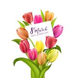 Beautiful red tulips isolated on white background. Beautiful bouquet of colorful tulips with a note inside. Greeting card to Women`s Day isolated on white Stock Photo