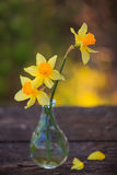 Beautiful bouquet of daffodils. On the table Stock Photo