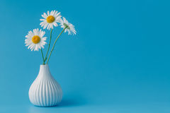 Beautiful bouquet of daisies in vase on light background Royalty Free Stock Photo