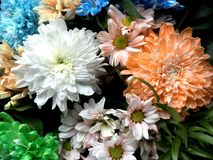 Beautiful bouquet of different colorful bright flowers. Stock Photo
