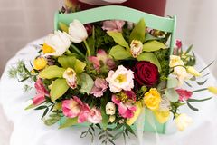 Beautiful bouquet of different colors stock images