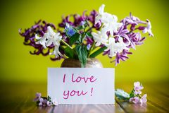 Beautiful bouquet of early spring flowers Stock Images