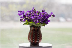 Beautiful bouquet of field violets. In a vase Stock Photography