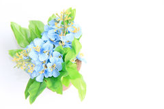Beautiful bouquet of flower for copy space on white background Royalty Free Stock Photos