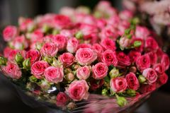 Beautiful bouquet of flowers consisting of little pink roses Stock Images