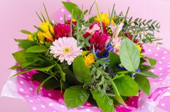 Beautiful bouquet of flowers on pink background royalty free stock images