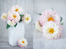 Beautiful bouquet of flowers. Royalty Free Stock Photography