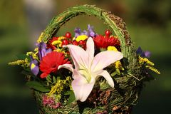 Beautiful bouquet of flowers for women. Stock Images