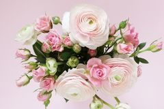 Beautiful bouquet of gently pink roses and ranunculus stock images
