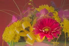 Beautiful bouquet of gerbera flowers and chrysanthemum on a diff Royalty Free Stock Photo