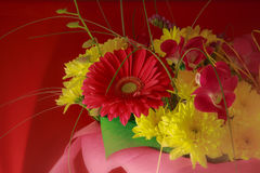 Beautiful bouquet of gerbera flowers and chrysanthemum on a diff Royalty Free Stock Images