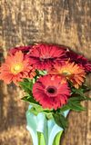 Beautiful bouquet of gerberas in a glass colored vase on the background of an old vintage wooden wall royalty free stock photography