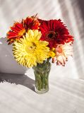 Beautiful bouquet of gerberas in a vase on a gray background stock photos