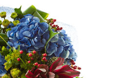 Beautiful bouquet of Hydrangeas Stock Photos