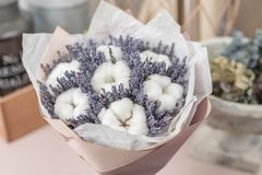 Beautiful bouquet lavender and cotton, on table . dried flowers white and lilac color.  stock photography