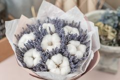 Beautiful bouquet lavender and cotton, on table . dried flowers white and lilac color.  royalty free stock photos