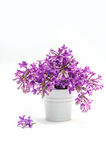 Beautiful bouquet of lilac in a decorative vase Stock Images