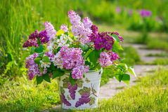 Beautiful bouquet of lilac in the garden Stock Photos