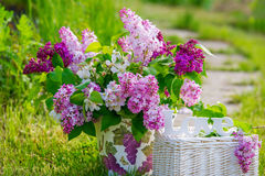 Beautiful bouquet of lilac in the garden Royalty Free Stock Images