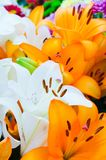 Bouquet of lily flowers. Beautiful bouquet of lily flowers Royalty Free Stock Photos