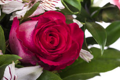 Beautiful bouquet of many colorful flowers with red rose on top Stock Images