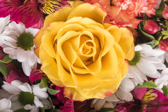 Beautiful bouquet of many colorful flowers with yellow rose on top Royalty Free Stock Photography