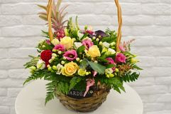 Beautiful bouquet mix colorful flowers in modern basket royalty free stock photos