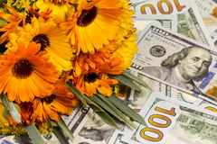 Beautiful bouquet and money. Beautiful bouquet of garden flowers and herbs located on dollar bills Stock Photos