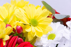 A beautiful bouquet of multicolored flowers Stock Image