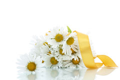 Free Beautiful Bouquet Of White Daisies Royalty Free Stock Photography - 45159577