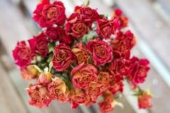 Beautiful bouquet of orange dry roses Stock Photos