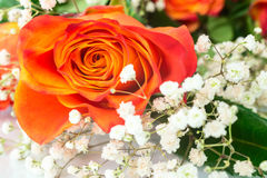 Beautiful bouquet of orange rose with white flowers closeup Royalty Free Stock Photo