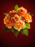 Beautiful bouquet of orange roses on dark red back Royalty Free Stock Photo