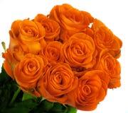 Beautiful bouquet of orange roses. Isolated on white background Stock Image