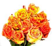 Beautiful bouquet of orange roses Stock Photos