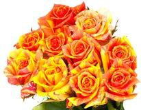 Beautiful bouquet of orange roses Royalty Free Stock Image