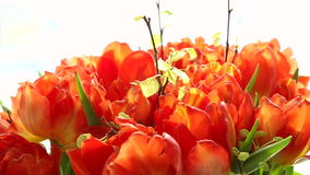 Beautiful bouquet of orange tulips turning. stock video