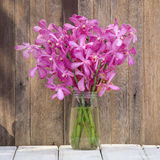 Beautiful bouquet of orchids flower on a wooden table Stock Image