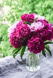 Beautiful bouquet of peonies on the window overlooking the garden - a cozy home still life. Natural beauty concept. Beautiful bouquet of peonies on the window stock photo