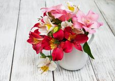Beautiful bouquet of pink alstroemeria Stock Images